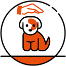 Caniscool_Cachorros-Home2